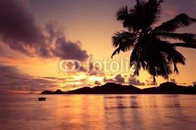 Beboy, Seychelles couché de soleil (seychellen, strand, kokospalme, palme, sonnenuntergänge, legen, sonne, ozean, tropics, tropics, tropisch, tropisch, exotismus, welle, meer, urlaub, vakanz, himmel, paradiesisch, palme, bucht, insel, lagune, indianer, kokos, reisen, körperhaltung, seasid)