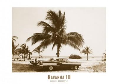 Barbara Dombrowski, Havanna III (Oldtimer, Straßenkreuzer, Auto, Palme, Kuba, Nostalgie, Photokunst, Fotokunst, Wohnzimmer, Treppenhaus, sepia)