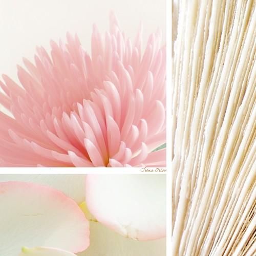 Irena Orlov, Mystic Calm (Blüten, Blütenblätter,  Wellness, Fotokollage, Fotokunst, Badezimmer, Treppenhaus, Wunschgröße, bunt Badezimmer, Treppenhaus, Wunschgröße, bunt)