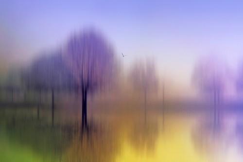 Jessica Jenny, Impressions (Wunschgröße, Malerei, modern,  Landschaftsmalerei, abstrahierte Landschaft, Natur, Park, Bäume, Fluss, unscharf, verwischt, Schlafzimmer, Wohnzimmer, Treppenhaus, bunt)