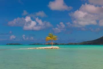 John Xiong, Bora Bora Lone Palm (Photokunst)