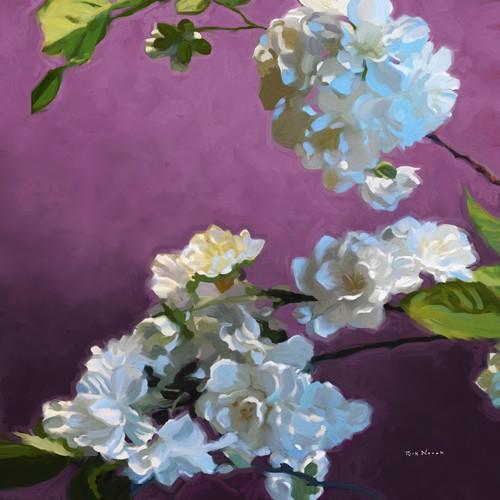 Rick Novak, Blossom I