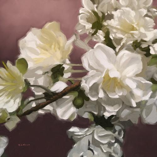Rick Novak, Roses IV