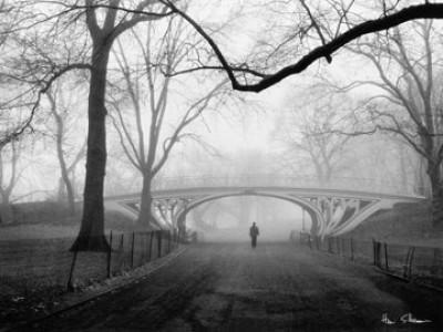 Henri Silberman, Gothic Bridge, Central Park NYC (Fotographie, Photokunst, Fotokunst, Städte&Gebäude, Architektur, Brücke, Büro, Business)