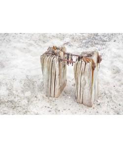 Irk Boockhoff, Verwittertes Holz am Strand