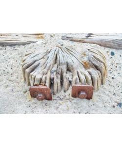 Irk Boockhoff, Verwittertes Holz am Strand 2