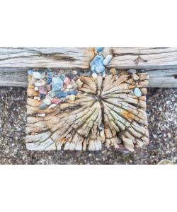 Irk Boockhoff, Verwittertes Holz am Strand 4