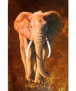 Jean-Marc Chamard, Elephant 02
