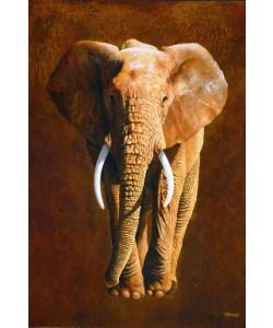 Jean-Marc Chamard, Elephant 04