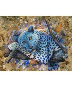 Jean-Marc Chamard, Leopard
