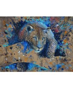 Jean-Marc Chamard, Jaguar