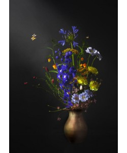 Sander Van Laar, Flower Creation 5
