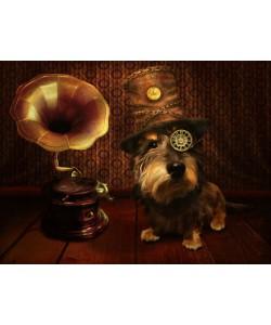 Babette, Steampunk Dog