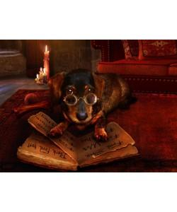 Babette, The book of Dogtalk