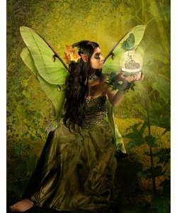 Babette, Fairy 16