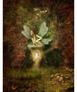 Babette, Fairy 17
