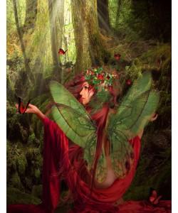 Babette, Fairy 43