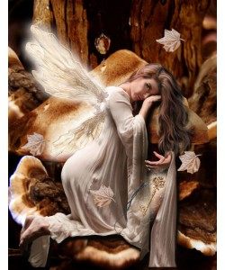 Babette, Fairy 45