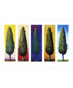 Rasch Folkert 5 Zypressen (1999) (Lithographie, handsigniert)