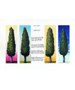 Rasch Folkert 4 Zypressen mit Gedicht (1999) (Lithographie, handsigniert)