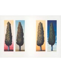Rasch Folkert 4 Zypressen (1999) (Lithographie, handsigniert)