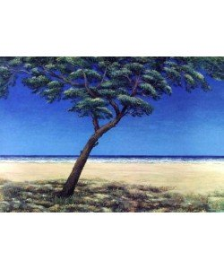 Rasch Folkert Pinie am Meer Blau (2000) (Lithographie, handsigniert)
