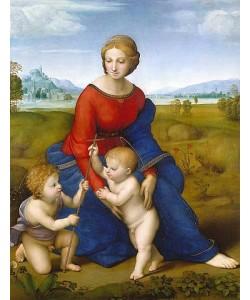 Raffael (Raffaello Sanzio), Die Madonna im Grünen.