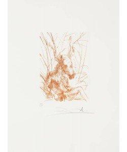 Dali Salvador Shakespeare I, Sommernachtstraum WVZ 280 (30) (Radierung, handsigniert, nummeriert)