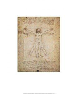 Leonardo da Vinci, Schema Delle Proporzioni (Offset)
