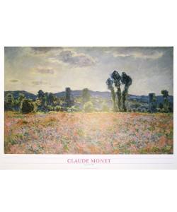 Claude Monet, Poppyfield, 1898