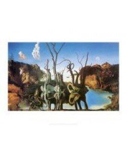 Salvador Dali, Swan Reflecting Elephants