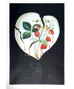 Dali Salvador Flordali Erdbeeren (20) (Radierung, handsigniert)