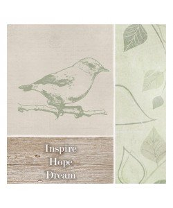 Taylor Greene, INSPIRE BIRD