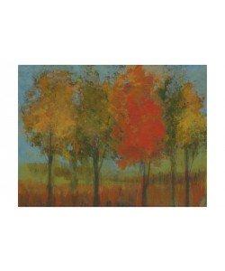 Linda Davey, A FEW BLOND TREES II