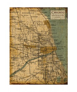 Carole Stevens, ENVIRONS CHICAGO III