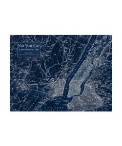 Carole Stevens, ENVIRONS NYC V