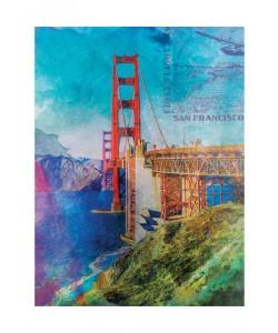 Jody Taylor, SAN FRANCISCO