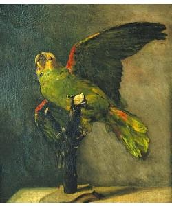 Vincent van Gogh, Der grüne Papagei. 1885