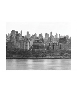 Sandro De Carvalho, NEW YORK CITY II