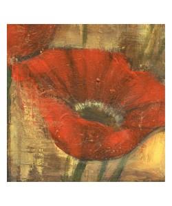 Linda Davey, RED POPPIE IV