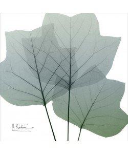 Albert Koetsier, LIGHT GREEN I