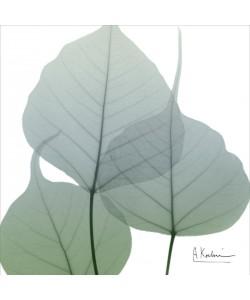 Albert Koetsier, LIGHT GREEN II