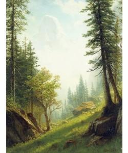 Albert Bierstadt, In den Berner Alpen.