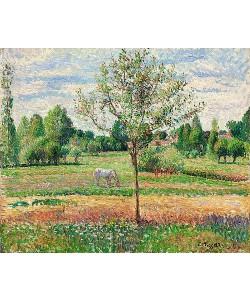 Camille Pissarro, Wiese mit Schimmel, Eragny (Le Pré avec Cheval Gris, Eragny). 1893