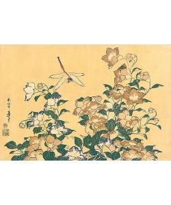 Katsushika Hokusai, Chinesische Glockenblume und Libelle. Aus 'Die große Blumenserie'.