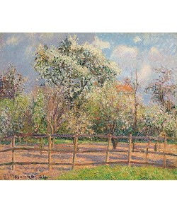 Camille Pissarro, Blühende Birnbäume, Eragny (Poiriers en fleur, Eragny). 1894