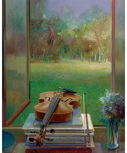 Rein Pol, Violin with a view