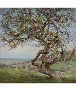 Patrick Creyghton, Blooming apple tree