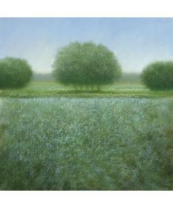 Hans Dolieslager, Cool landscape