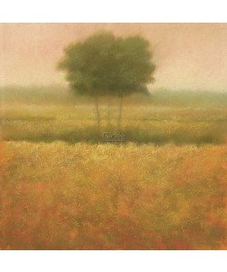 Hans Dolieslager, Yellow Field